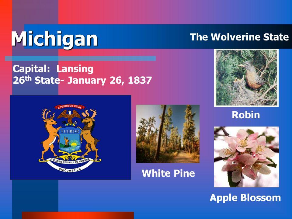 Michigan The Wolverine State Capital: Lansing