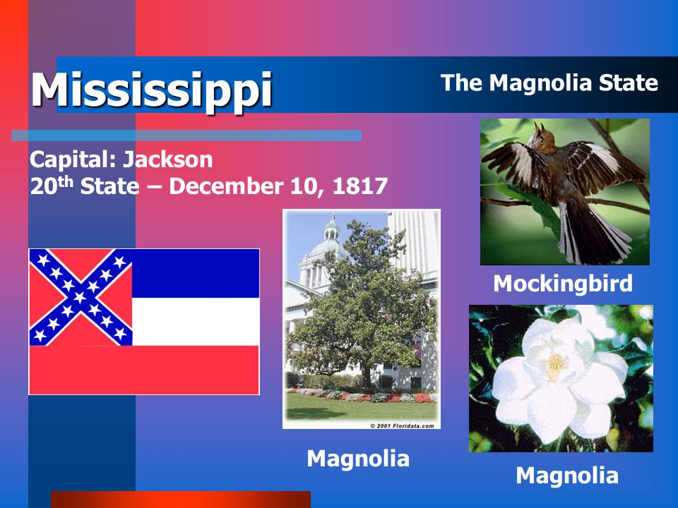 Mississippi The Magnolia State Capital: Jackson