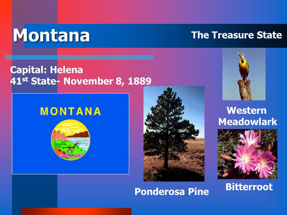 Montana The Treasure State Capital: Helena