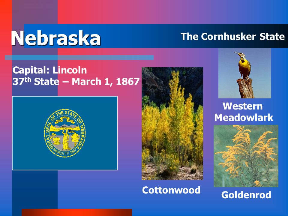 Nebraska The Cornhusker State Capital: Lincoln