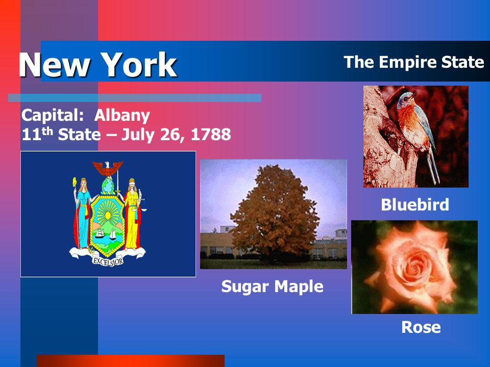 New York The Empire State Capital: Albany 11th State – July 26, 1788