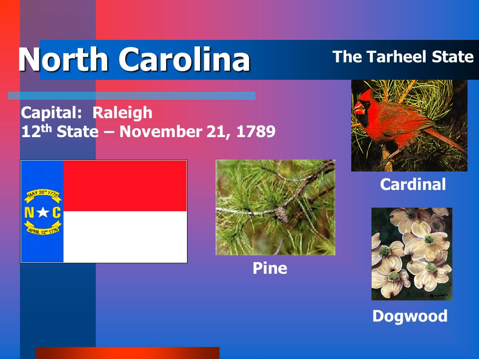 North Carolina The Tarheel State Capital: Raleigh