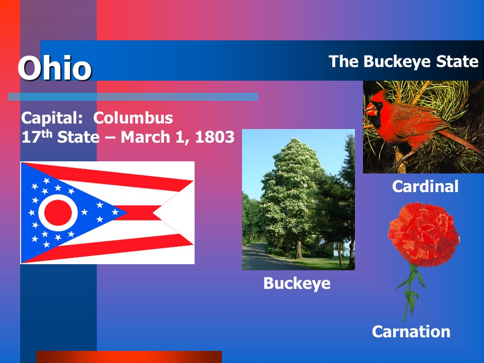 Ohio The Buckeye State Capital: Columbus 17th State – March 1, 1803