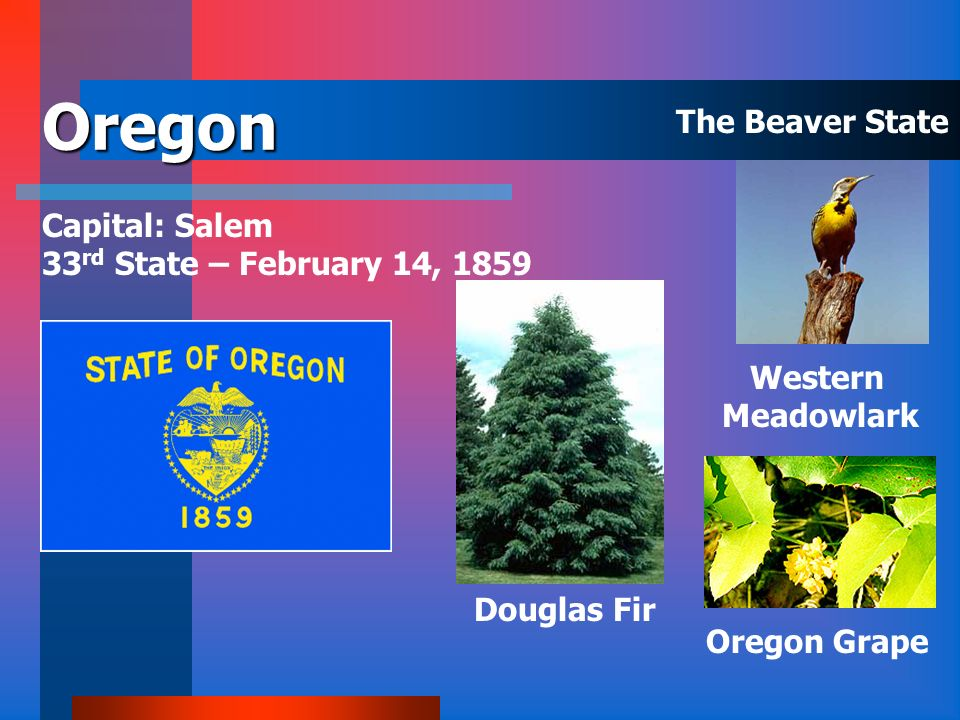 Oregon The Beaver State Capital: Salem 33rd State – February 14, 1859