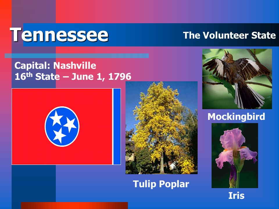 Tennessee The Volunteer State Capital: Nashville
