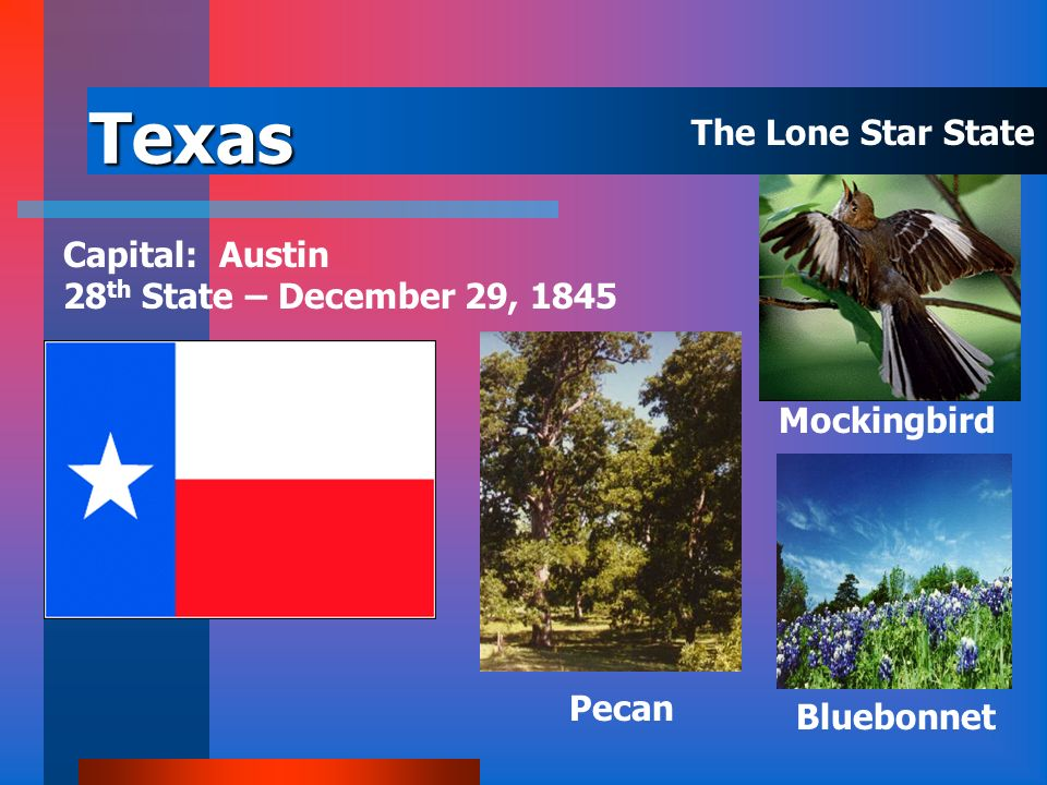 Texas The Lone Star State Capital: Austin