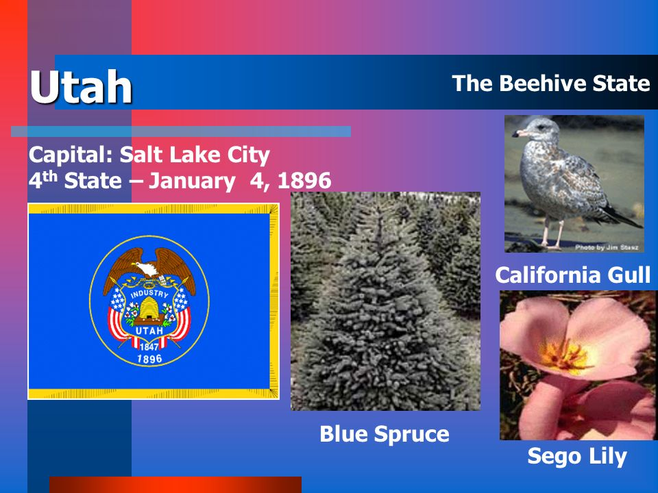 Utah The Beehive State Capital: Salt Lake City
