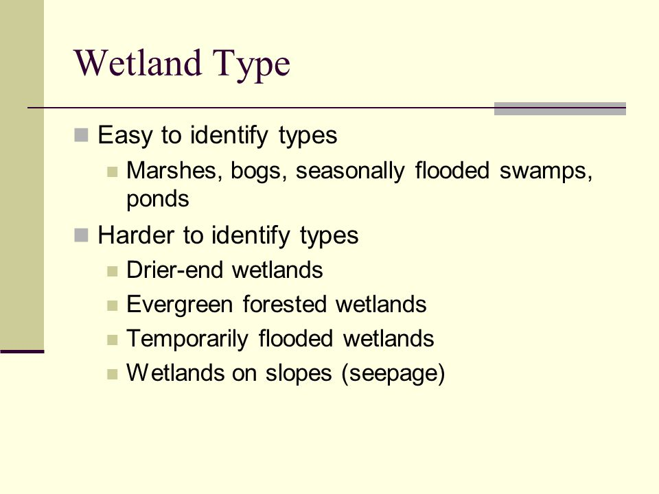 Wetland Type Easy to identify types Harder to identify types
