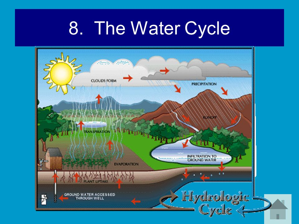 8. The Water Cycle