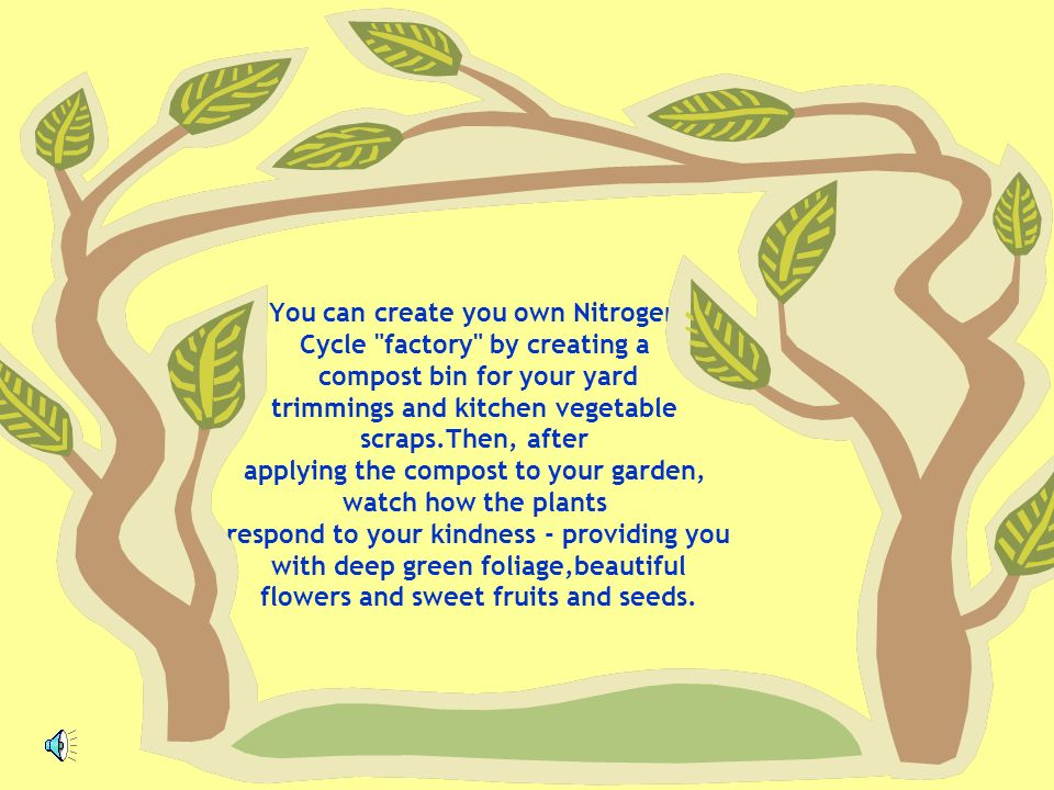 You can create you own Nitrogen Cycle factory by creating a compost bin for your yard trimmings and kitchen vegetable scraps.Then, after applying the compost to your garden, watch how the plants respond to your kindness - providing you with deep green foliage,beautiful flowers and sweet fruits and seeds.