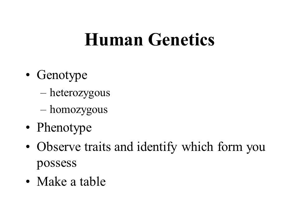 Human Genetics Genotype Phenotype
