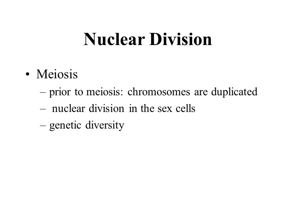Nuclear Division Meiosis prior to meiosis: chromosomes are duplicated