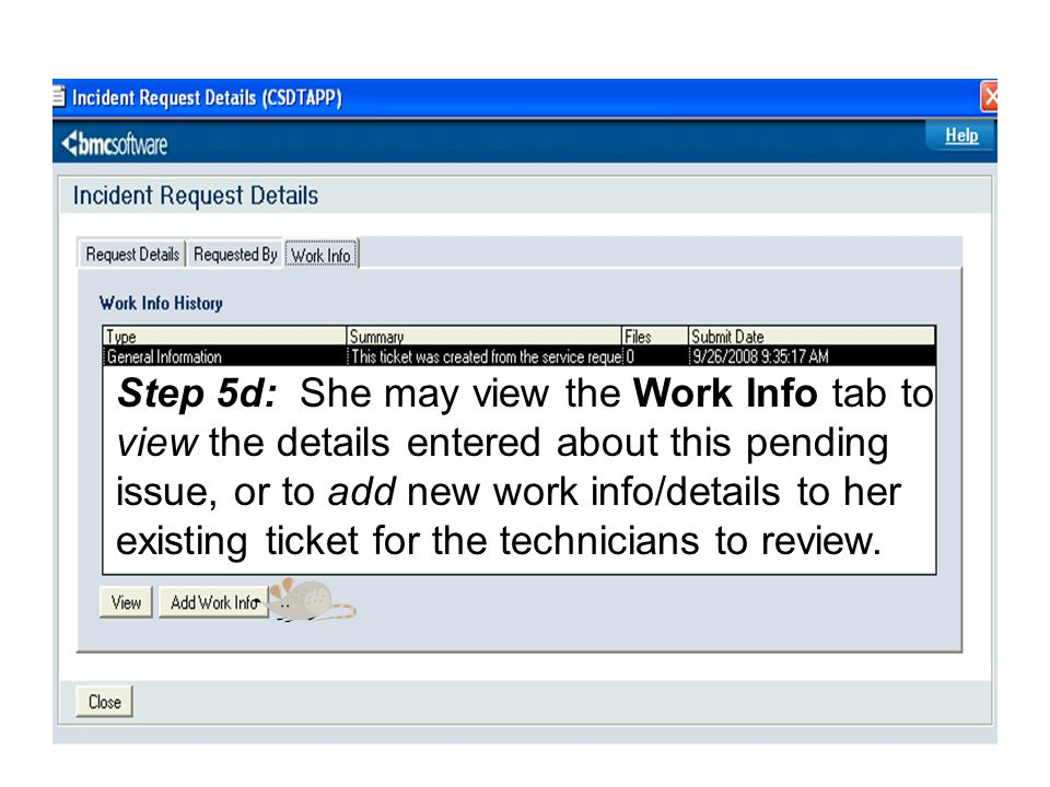 Step 5d: She may view the Work Info tab to view the details entered about this pending issue, or to add new work info/details to her existing ticket for the technicians to review.