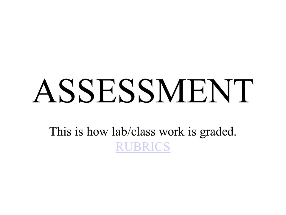 This is how lab/class work is graded. RUBRICS