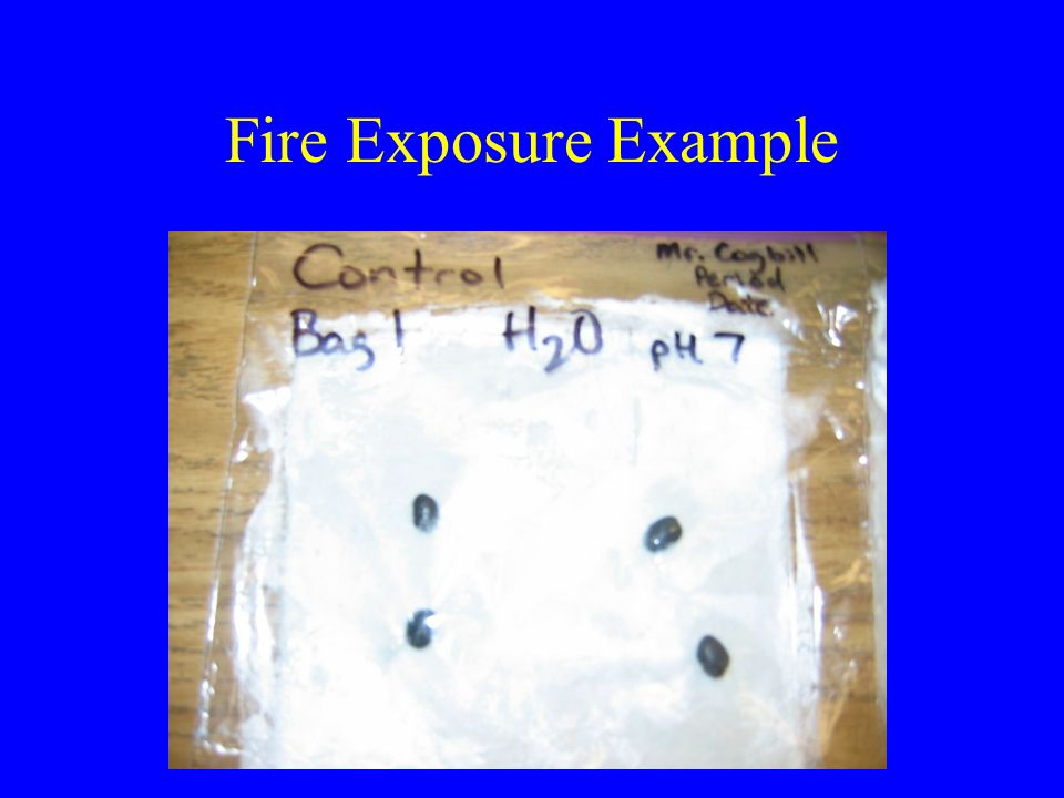 Fire Exposure Example