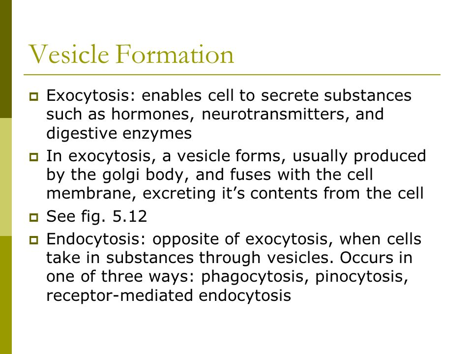 Vesicle FormationExocytosis: enables cell to secrete substances such as hormones, neurotransmitters, and digestive enzymes.