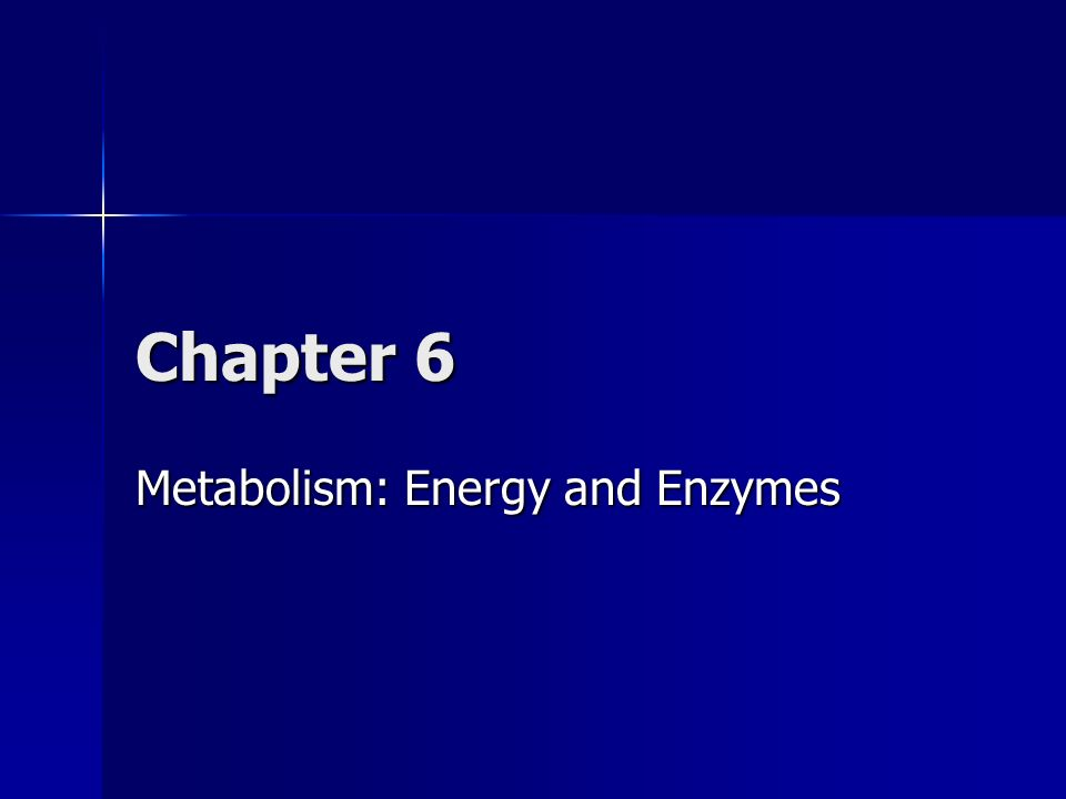 Metabolism: Energy and Enzymes