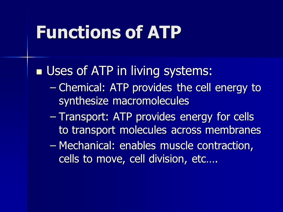 Functions of ATP Uses of ATP in living systems: