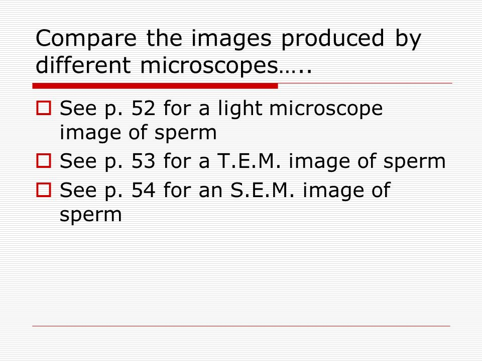 Compare the images produced by different microscopes…..