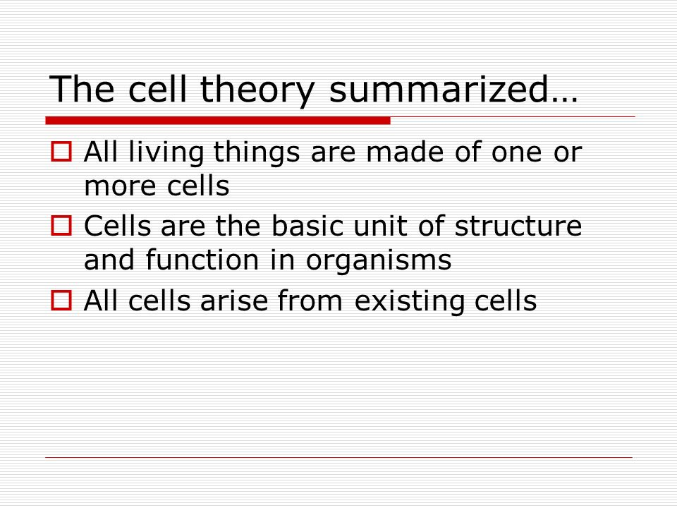 The cell theory summarized…