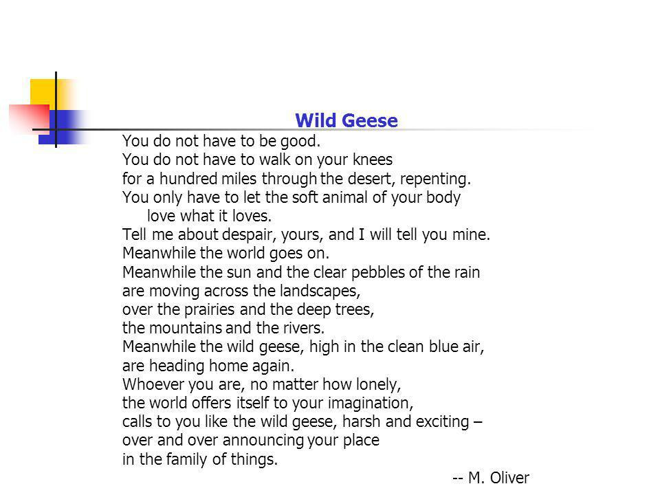 Wild Geese You do not have to be good.