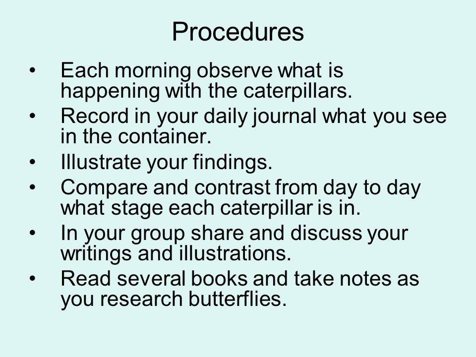 Procedures Each morning observe what is happening with the caterpillars. Record in your daily journal what you see in the container.