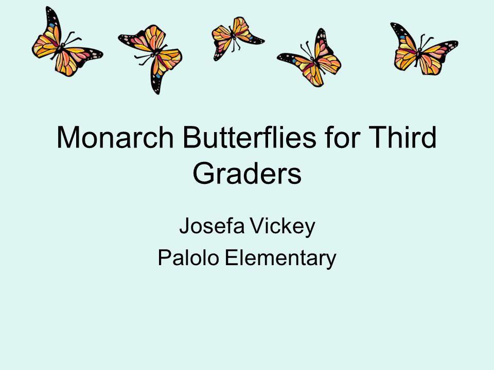 Monarch Butterflies for Third Graders