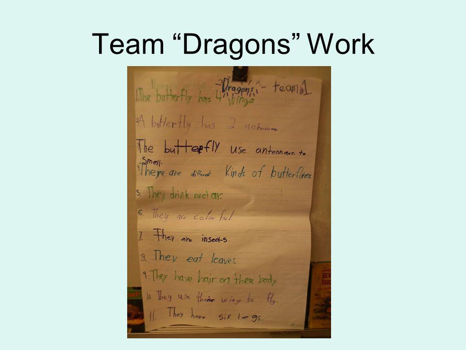 Team Dragons Work