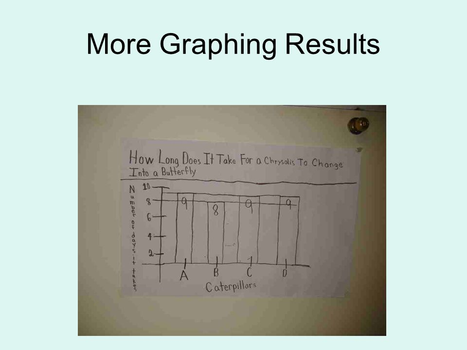 More Graphing Results