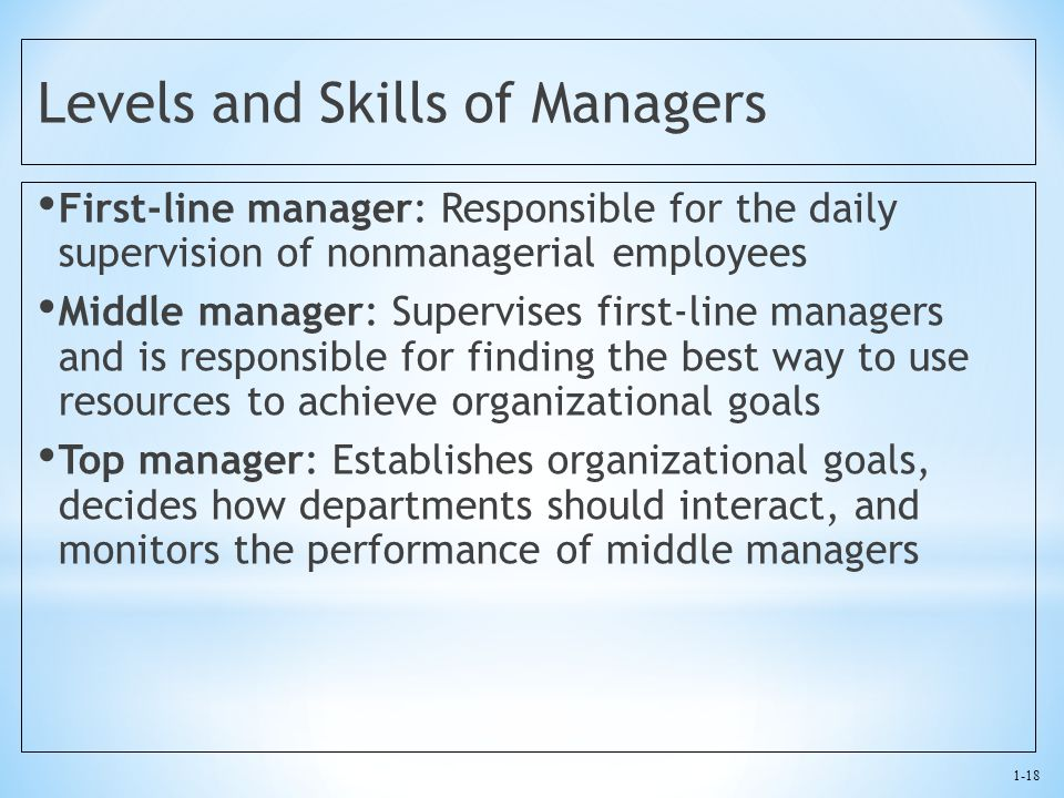 Levels and Skills of Managers