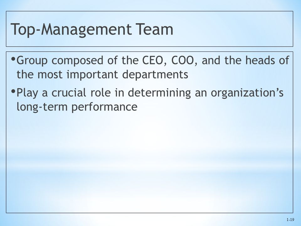 Top-Management Team Group composed of the CEO, COO, and the heads of the most important departments.