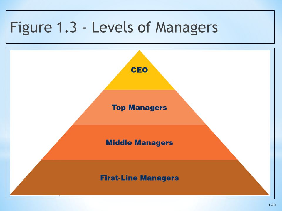 Figure 1.3 - Levels of Managers