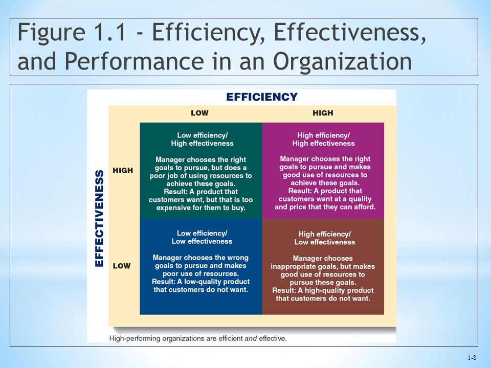 Figure 1.1 - Efficiency, Effectiveness, and Performance in an Organization