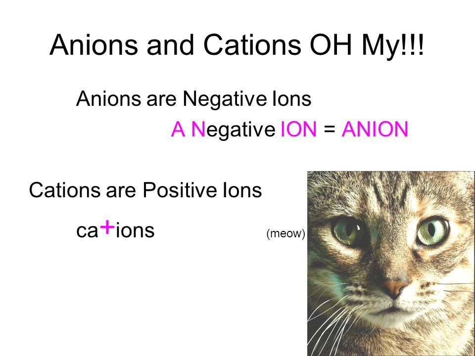 Anions and Cations OH My!!!