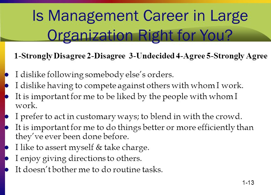 Is Management Career in Large Organization Right for You