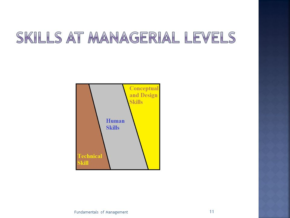 SKILLS AT MANAGERIAL LEVELS