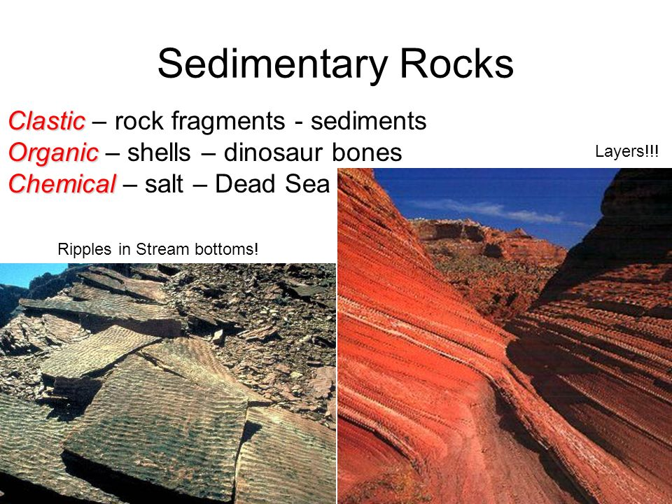 Sedimentary Rocks Clastic – rock fragments - sediments