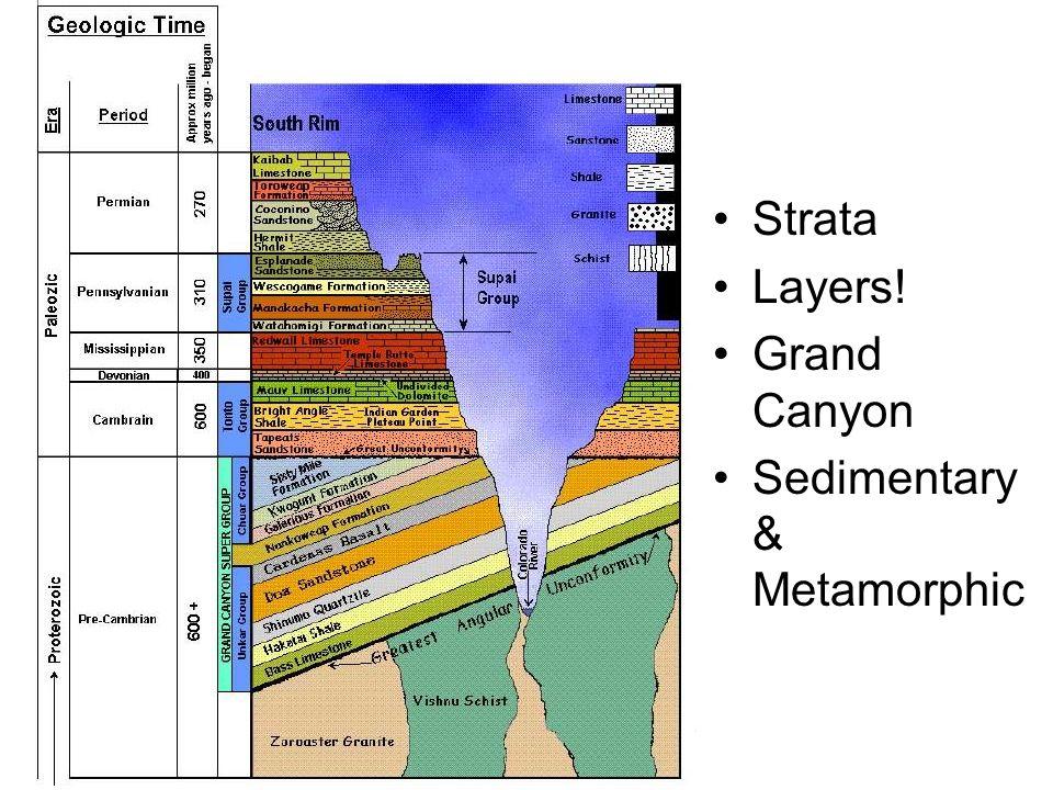 Strata Layers! Grand Canyon Sedimentary & Metamorphic