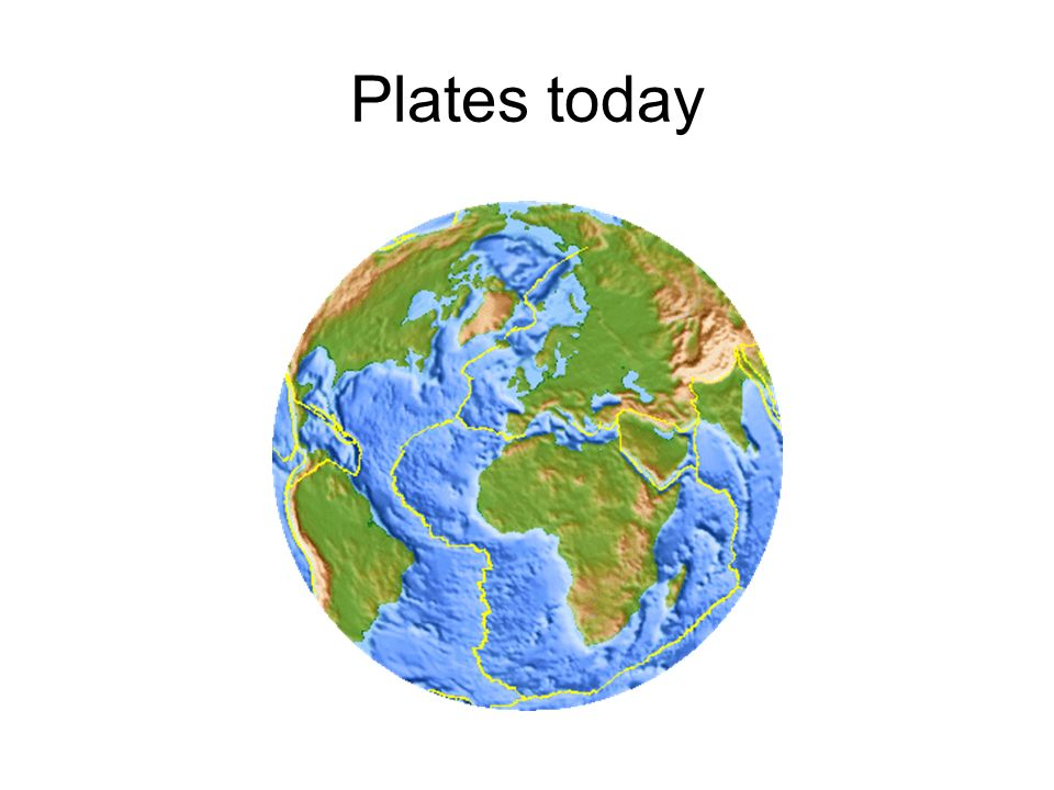Plates today