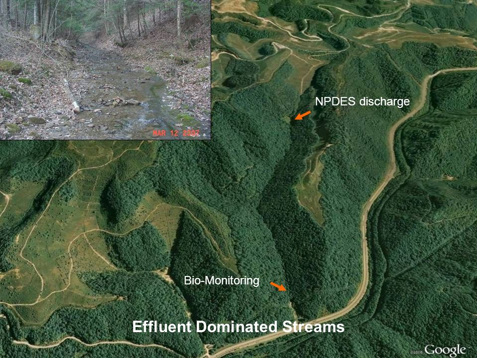 Effluent Dominated Streams