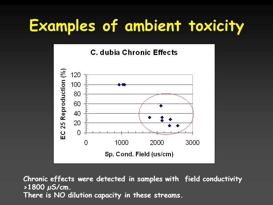 Examples of ambient toxicity