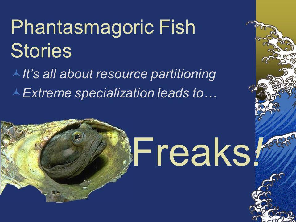 Phantasmagoric Fish Stories