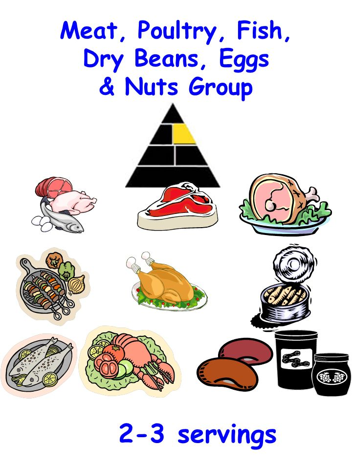 Meat, Poultry, Fish, Dry Beans, Eggs & Nuts Group