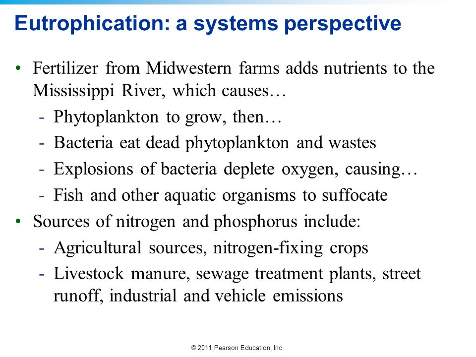 Eutrophication: a systems perspective