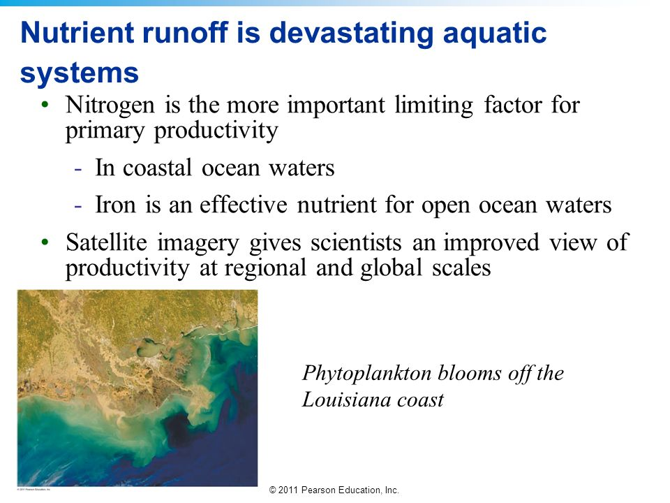 Nutrient runoff is devastating aquatic systems