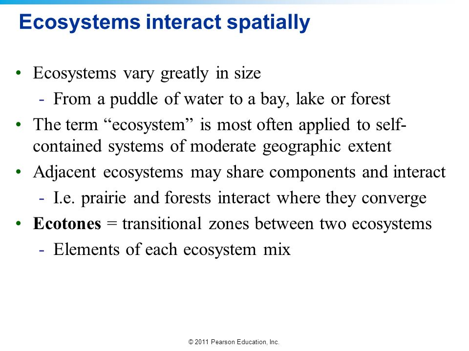 Ecosystems interact spatially
