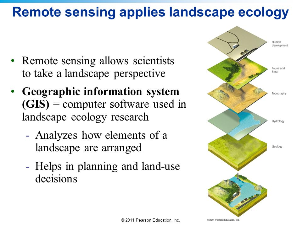 Remote sensing applies landscape ecology