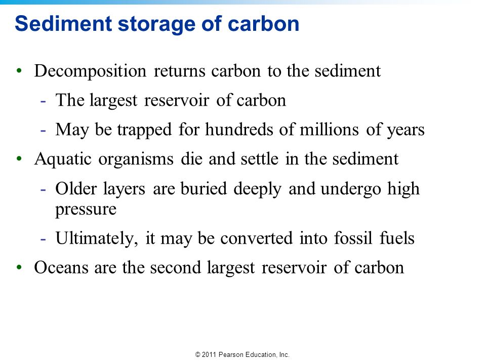 Sediment storage of carbon