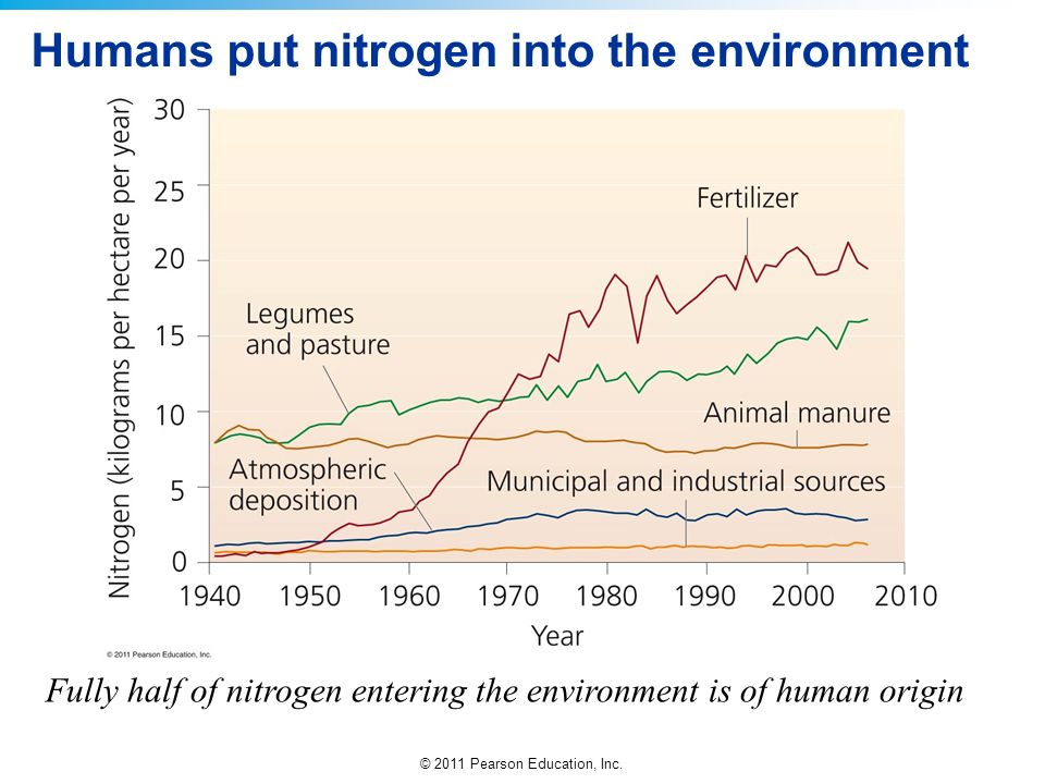 Humans put nitrogen into the environment