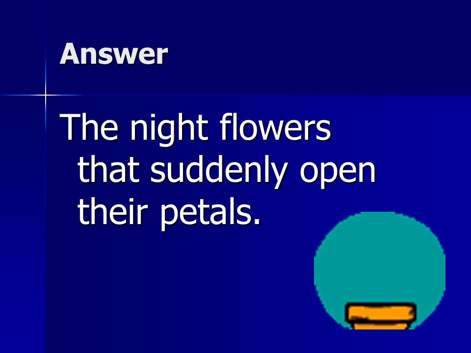 The night flowers that suddenly open their petals.